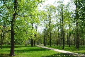 Park, ul. Národních hrdinů