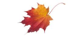 Podzimní FASHION BAZAR