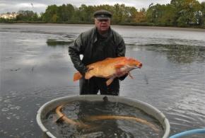Velký počernický rybník opět vydal své bohatství